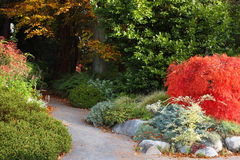 Trajeto do jardim Foto de Stock Royalty Free