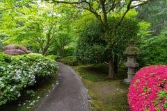 Trajeto do jardim com lanterna e as azáleas de pedra Imagens de Stock