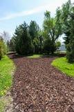 Trajeto do jardim com palha de canteiro da casca Fotografia de Stock Royalty Free