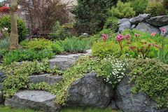 Trajeto do jardim da mola Fotografia de Stock Royalty Free
