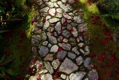 Trajeto do jardim no outono imagem de stock