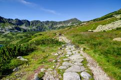 Trajeto do verão da montanha Fotografia de Stock Royalty Free