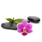 Trajeto dos seixos do zen. Termas e conceito dos cuidados médicos. Foto de Stock