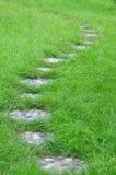 Trajeto dos seixos em gramas verdes em um jardim Fotos de Stock
