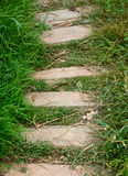 Trajeto e grama verde Foto de Stock Royalty Free