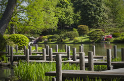 Trajeto e lago de passeio no jardim japonês fotos de stock