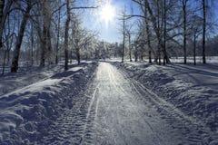 Trajeto e Sun da neve foto de stock royalty free