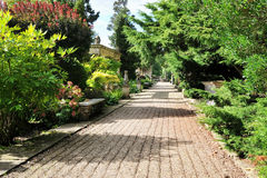 Trajeto em um jardim bonito da paisagem Imagens de Stock