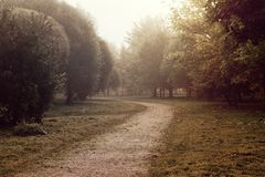 Trajeto em um parque com névoa Imagem de Stock