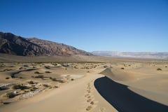 Trajeto em uma duna de areia Imagens de Stock