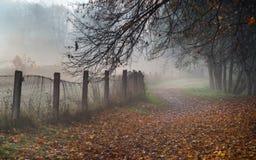 Trajeto enevoado no parque na manhã nevoenta adiantada do outono Cerca velha, foto de stock royalty free