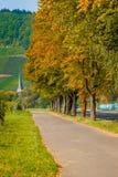 Trajeto entre as árvores do outono germany Fotos de Stock