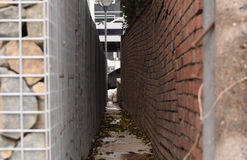 Trajeto entre as paredes de tijolo Foto de Stock Royalty Free