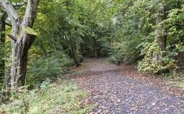 Trajeto largo em Daisy Nook Country Park, perto de Oldham imagem de stock