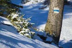 Trajeto marcado nas montanhas do inverno imagens de stock