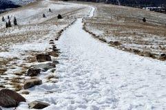 Trajeto nevado Imagens de Stock