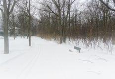 Trajeto nevoento bonito em uma neve foto de stock royalty free
