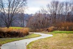 Trajeto no campo de golfe coberto de vegetação Imagem de Stock Royalty Free