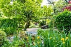 Trajeto no jardim japonês em Viena foto de stock royalty free