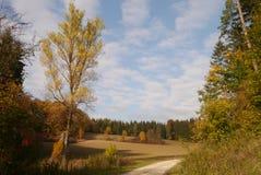 Trajeto no outono fotografia de stock