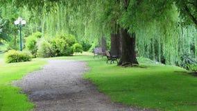 Trajeto no parque Imagem de Stock
