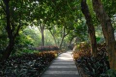 Trajeto no parque da cidade de Guangzhou, China imagem de stock