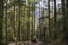 Trajeto no parque nacional de Ordesa y Monte Perdido imagens de stock