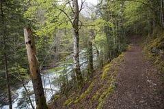 Trajeto no parque nacional de Ordesa y Monte Perdido imagens de stock royalty free