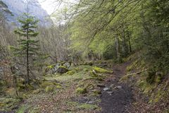 Trajeto no parque nacional de Ordesa y Monte Perdido na mola fotografia de stock