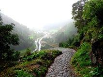 Trajeto no Terra de Faial a Dinamarca, Açores Fotos de Stock Royalty Free