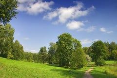 Trajeto para esverdear árvores Imagem de Stock Royalty Free