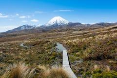 Trajeto para montar Ruapehu e lagos Tama, parque nacional de Tongariro, N Fotografia de Stock