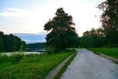 Trajeto perto do lago Fotografia de Stock Royalty Free