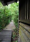 Trajeto que conduz à cabana de madeira na selva Foto de Stock