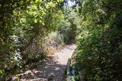 Trajeto que passa através de uma inclinação arborizada ao lado de um canal de água pequeno e que desce ao rio de Amud Fotografia de Stock