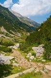 Trajeto rochoso da montanha Imagem de Stock