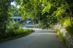 Trajeto running na floresta verde Fotos de Stock Royalty Free