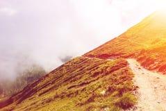 Trajeto serpentino tonificado que vai para baixo nas montanhas de Carpatian e Fotografia de Stock Royalty Free