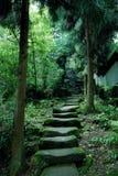 Trajetos da montanha de Tiantai Fotos de Stock Royalty Free