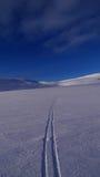 Trajetos do esqui Imagens de Stock Royalty Free