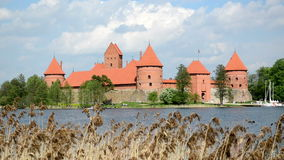 Trakai castle in island surround galve lake reed move in wind. Ancient Trakai castle in island surrounded by Galve lake and reed move in wind stock video footage