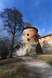 Trakai Island Castle, Lithuania. Royalty Free Stock Images