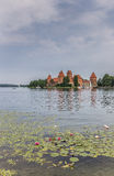Trakai red brick castle with a water lilies in front Royalty Free Stock Image