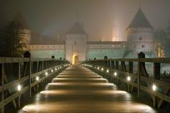 Trakai-Schloss Stockbild