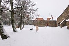 Trakai slott i Litauen i vinter arkivbilder