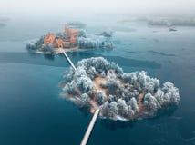 Trakai wyspy Grodowi i mroźni drzewa, Lithuania zdjęcie stock