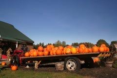 Traktor, Anhänger und Kürbise Stockfotografie