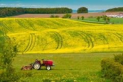 Traktor arbeitet an dem Feld Stockfoto