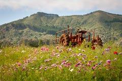 Traktor auf dem Blumen-Gebiet Stockfotos