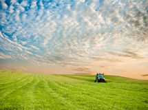 Traktor auf dem Gebiet Lizenzfreies Stockbild